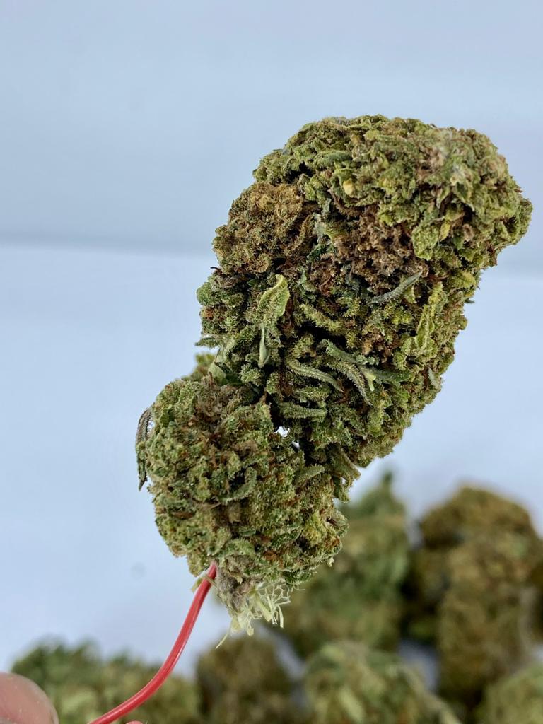 Gelato CBD Hemp Flower for Sale Online